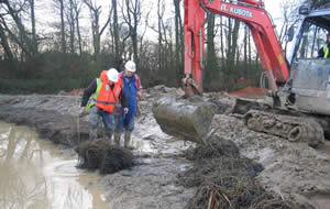Gartcosh Local Nature Reserve work to build newt habitat